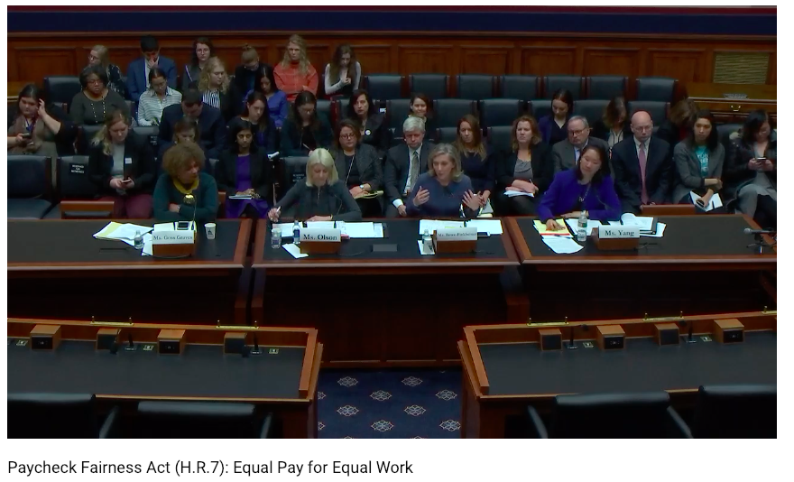[IMAGE DESCRIPTION: A panel of four people sits behind a large dark wood table at a Congressional hearing on equal pay for equal work.]